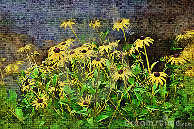 Black-Eyed Susans - Perfect for Cards