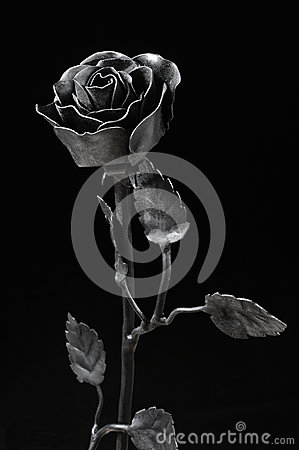 Free Black Forged Iron Rose Stock Photo - 47221750
