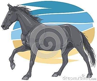 Black galloping horse illustration