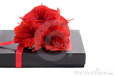 Black gift box with red flowers