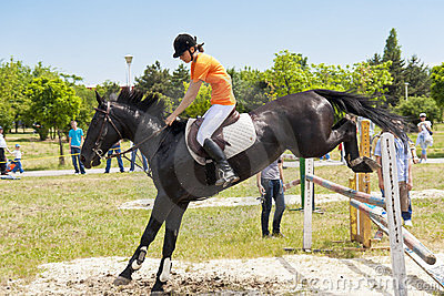 Black horse jumping Editorial Image