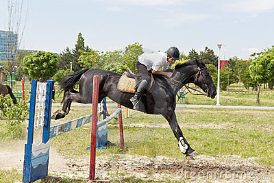 Black horse jumping an obstacle Editorial Stock Photo