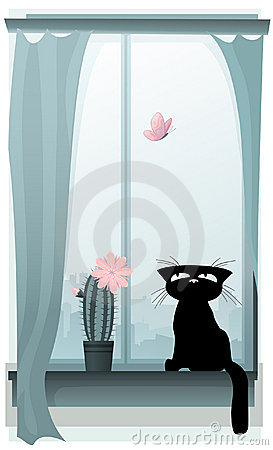 Free Black Kitty Hunting For A Butterfly Royalty Free Stock Images - 6829239