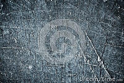 Black old wood, texture