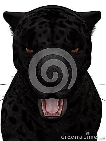 Black roaring jaguar isolated on white.