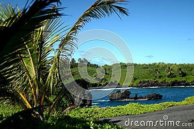 Black Sand Beach on Kauai