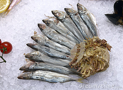Black Sea horse mackerel on ice