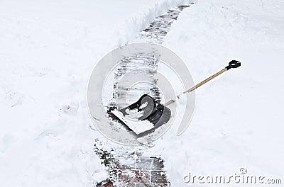 Black shovel