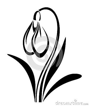 vector black silhouette of snowdrop flower.