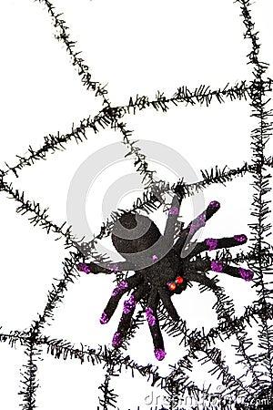 Black spiderweb