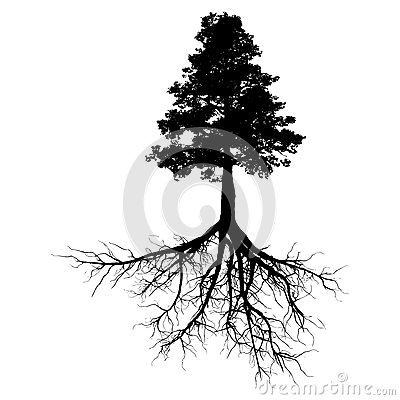 Black tree with roots Stock Photo