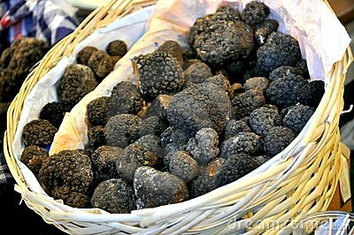 Black truffle market in Italy