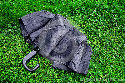 Black wet umbrella on green grass