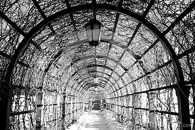 Black and white  archway in a winter park