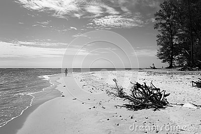 Black and white beach photo
