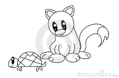 Black and white cat with turtle