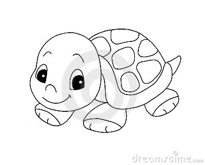Black and white - cute turtle