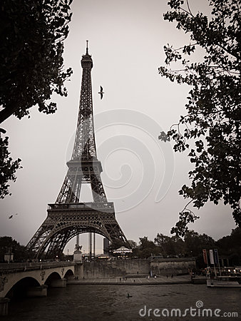 Black and White Eiffel Tower in the City of Paris