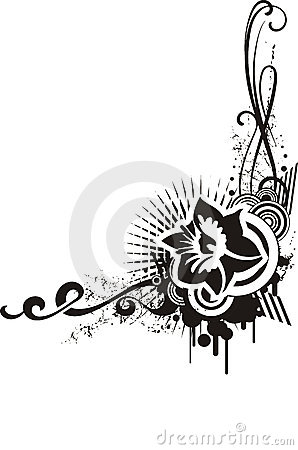 Black & white floral designs