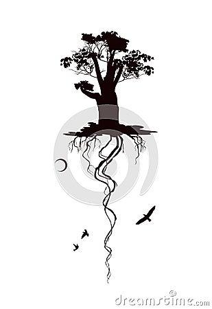 Black and white flying oak