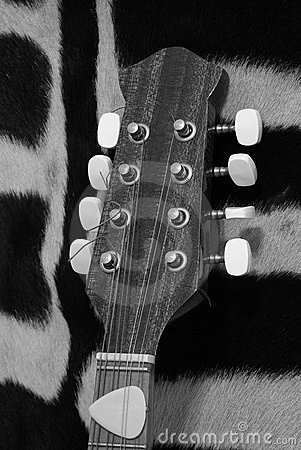 Black and white guitar mandolin headstock