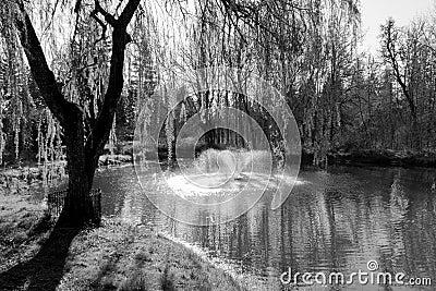 Landscape Image of pond