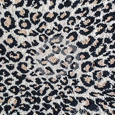 Black And White Leopard Tiger Rug Stock Photo Image