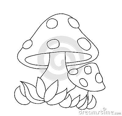 Black and white - Mushrooms