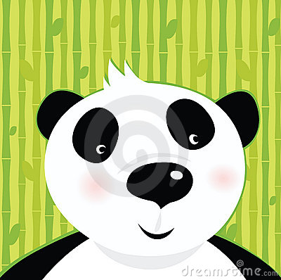 Black and white panda bear