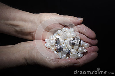 Black and white pearls collected from the water