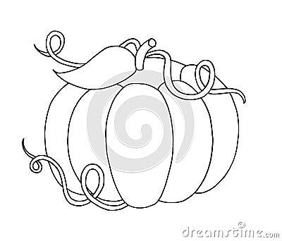 Black and white - Pumpkin