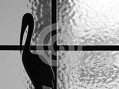 Black and white window