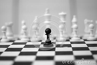 Black and whites battle