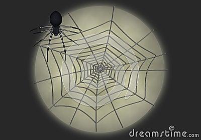 Black widow illustration 7