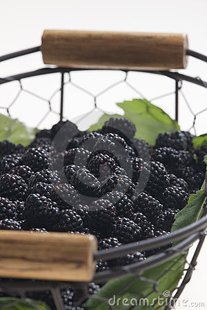 Blackberries in basket