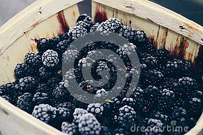 Blackberries On Brown Wooden Container Free Public Domain Cc0 Image