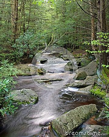 Blackwater River-West Virginia