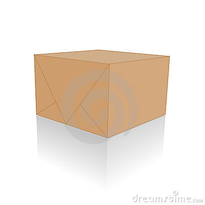 Blank Brown Package