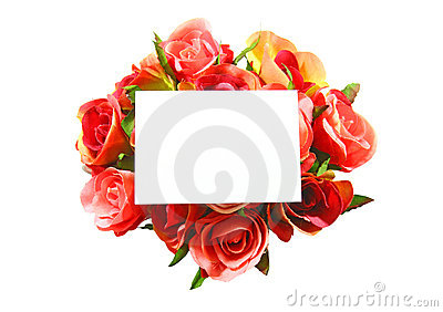 Blank card and rose isolated