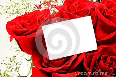 Blank greeting card and roses