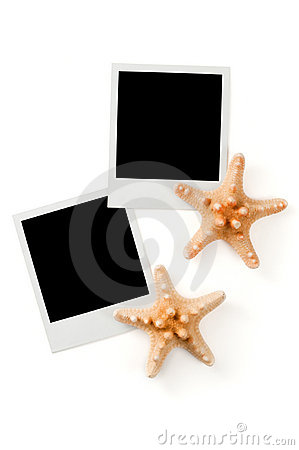 Blank instant photo prints and sea stars