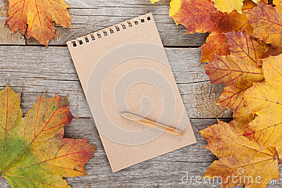 Blank page and colorful autumn maple leaves stock photo image 42721803