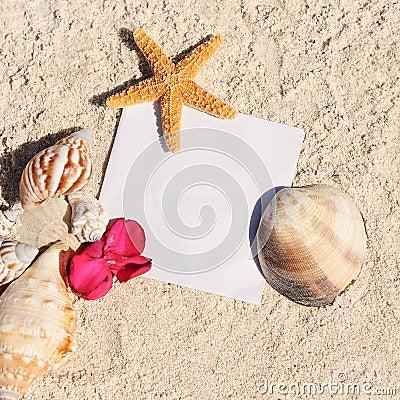 Blank paper beach sand starfish shells summer