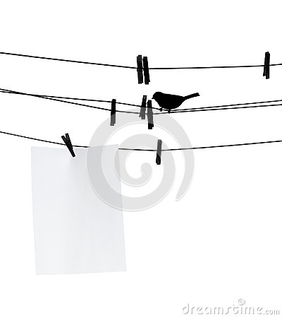 Blank paper sheet on clothesline