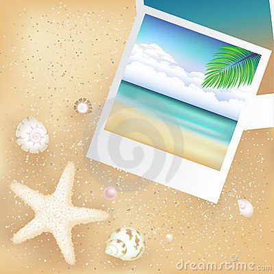 Blank Photos With Starfish. Vector