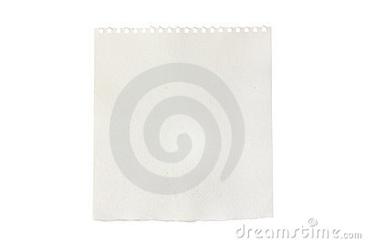 Blank piece of torn notebook or sketchbook paper