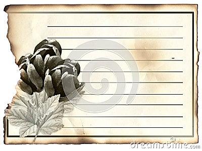 Blank post card for condolence,