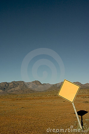 Free Blank Road Sign Stock Photography - 144602