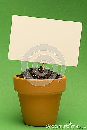 Blank Sign in Little Flower Pot