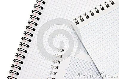 Blank spiral bound notepad